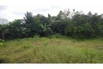 Tanah Luas Untuk Rumah Dekat Pusat Kota Baubau