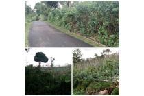 Tanah cantik di Punclut, Lembang, Bandung barat.