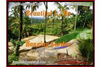 BUC, 17.000  m2 View tebing,sawah,sungai ayung