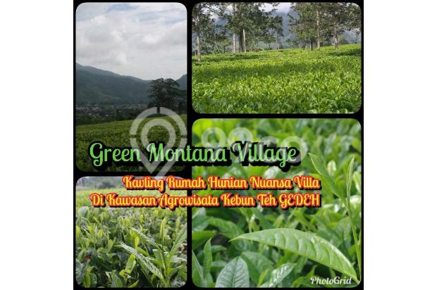 Tanah Kavling Murah di Puncak Jawa Barat Buy Back Guarantee By Developer 17794760