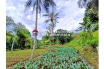 Vila-Bandung Barat-8