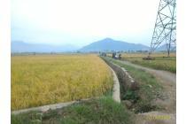 Tanah Murah Produktif di belakang Stasiun kereta Api Haur Pugur