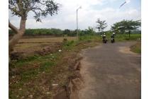 Tanah Jalan Mojopahit Perum Sempusari Jember