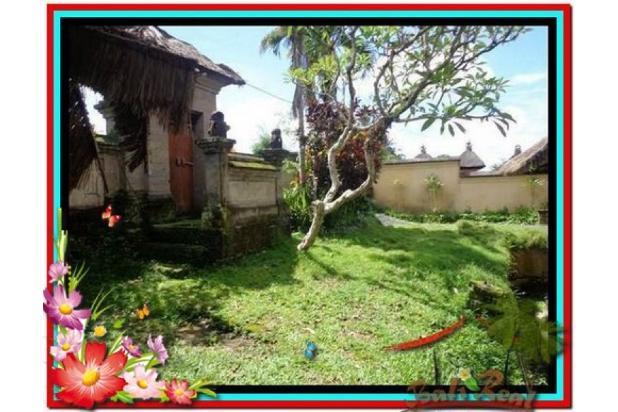 Potensial, 5.100 m2 View sungai, sawah, tebing linkungan villa di Ubud 3873199