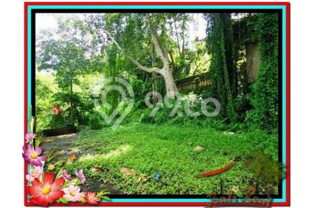 Potensial, 5.100 m2 View sungai, sawah, tebing linkungan villa di Ubud 3873201