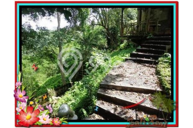 Potensial, 5.100 m2 View sungai, sawah, tebing linkungan villa di Ubud 3873204