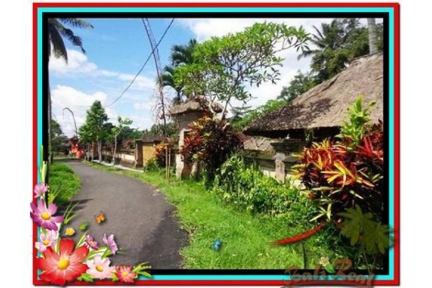 Potensial, 5.100 m2 View sungai, sawah, tebing linkungan villa di Ubud 3873205