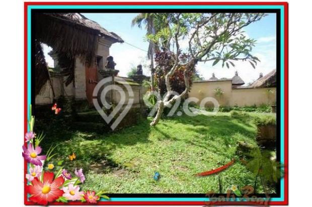Potensial, 5.100 m2 View sungai, sawah, tebing linkungan villa di Ubud 3873207
