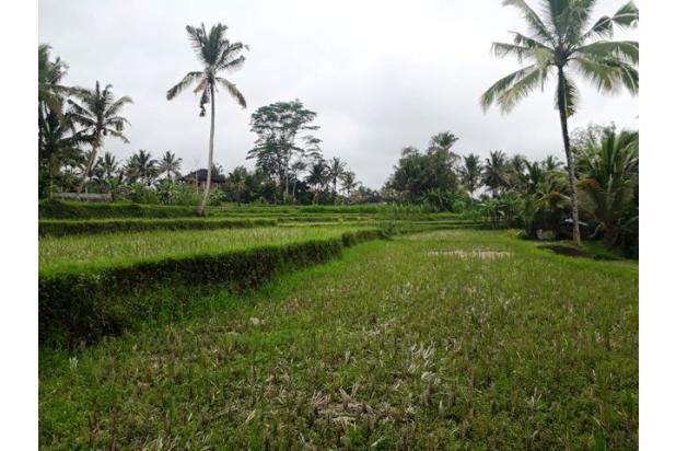 Rp3,33mily Tanah Dijual