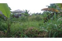 Tanah murah di bogor sindang barang 500m2 SHM