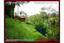 Exotic !,  7.800 m2 di  Dekat sentral Ubud