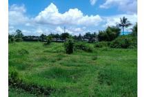 Tanah 5000 m2 Strategis di Loji, Bogor, Jawa Barat
