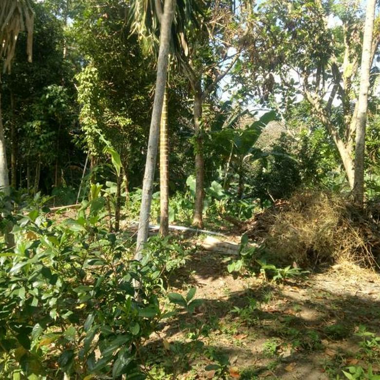 KD-0N Dijual tanah ideal peruntukan villa los sungai Lokasi : Kaba-kaba tabanan. Bali