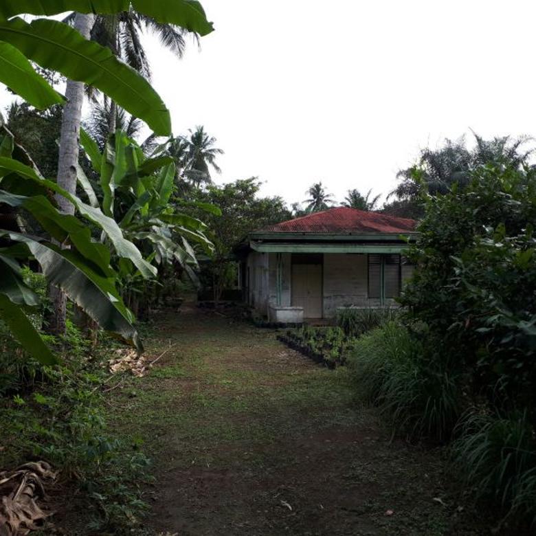 Dijual tanah murah di Desa Tanah Seribu, 6 KM dari Binjai, Sumatera Utara.