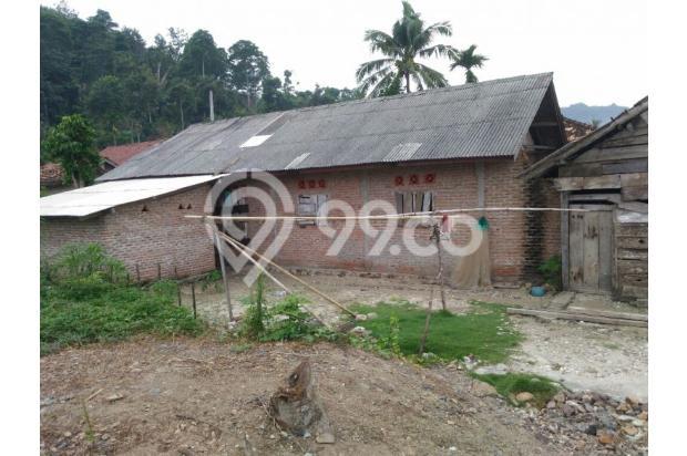 dijual tanah sekaligus rumah pinggir pantai di Teluk Kiluan, Lampung! Nego 12397147