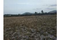Tanah-Bandar Lampung-9
