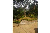 MURAH POLL!! Villa Gardena Trawas Lingkungan Asri dan Bebas Polusi