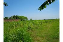 Cocok untuk Industri - Lahan Tanah Jalan Pantura 0 Km