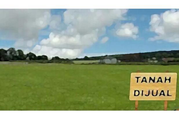 Rp186mily Tanah Dijual