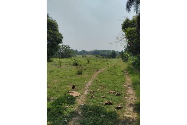 Rp37mily Tanah Dijual