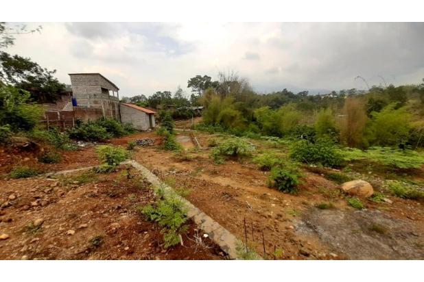 Rp5,4mily Tanah Dijual