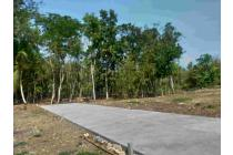 Kavlingan Areal Bandara YIA Kulonprogo