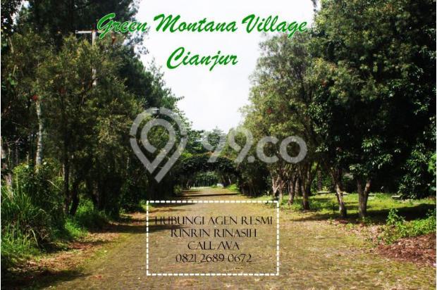 Investasi Tanah Kavling Murah Green Montana Village Puncak Jawa Barat 16224764
