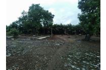 Tanah-Bekasi-15