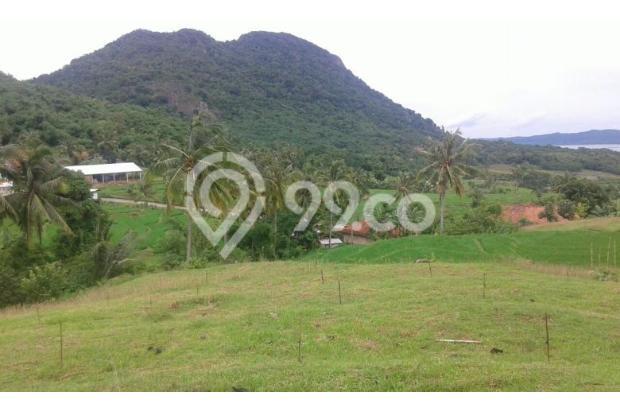 Dijual Tanah 500 hektar 1 pemilik daerah karawang 5409537