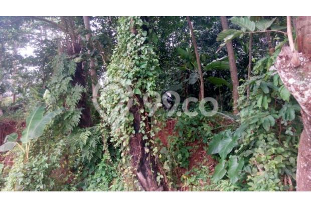 Dijual Tanah 500 hektar 1 pemilik daerah karawang 5409539
