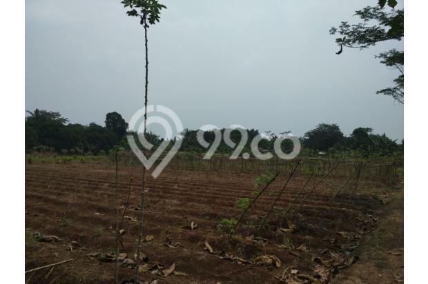 Dijual Tanah lokasi Diatas Perumahan Elit Dibekasi 13245179