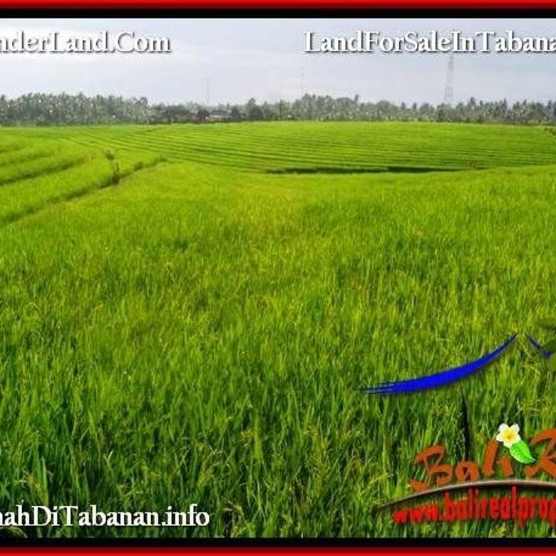 Tanah Prospek View sawah, Lingkungan Villa di Tabanan