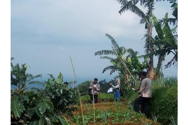 Tanah Kavling Murah di Puncak Jawa Barat Buy Back Guarantee By Developer 17793875