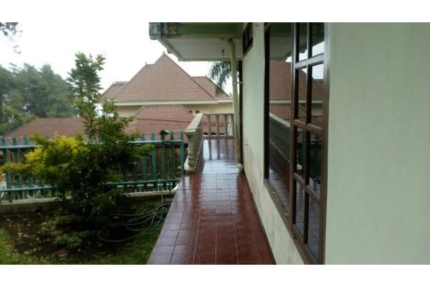 78 Villa di Foresta sebelah hotel Foresta Inn 14006574