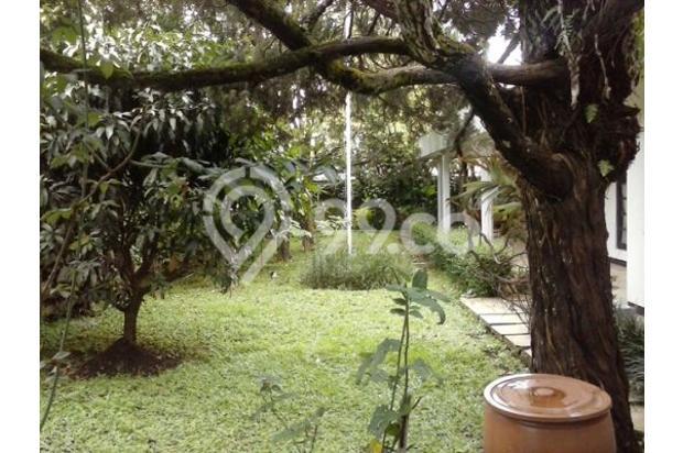 Cari rumah di daerah Dago Bandung tanah luas 13506106