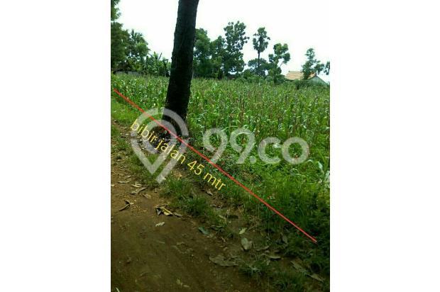Tanah murah 150 rb/m2, luas 2090 m2, akses truck bisa masuk 17994103