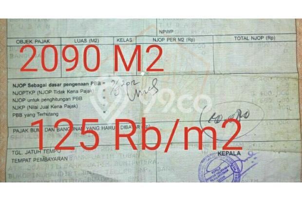 Tanah murah 150 rb/m2, luas 2090 m2, akses truck bisa masuk 17994238