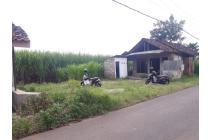 Tanah-Mojokerto-1
