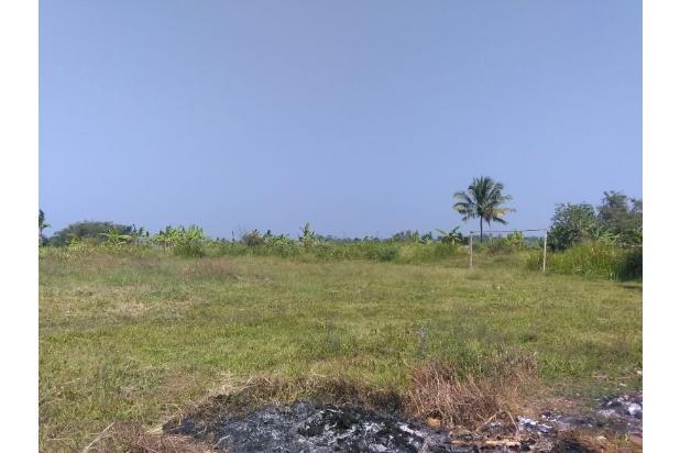 Rp14,8mily Tanah Dijual
