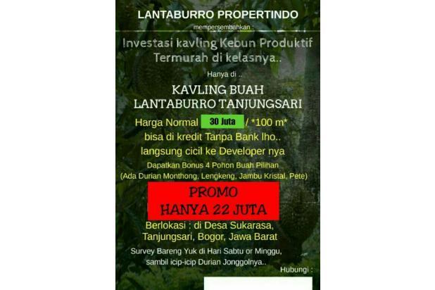 PROMO HEBAT|tanah murah seHARGA MOTOR,dapat kavling buah di BOGOR 16845078