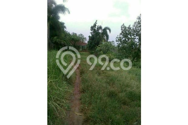 PROMO HEBAT|tanah murah seHARGA MOTOR,dapat kavling buah di BOGOR 16845102