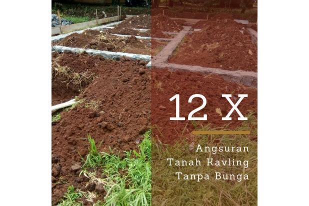 Nabung 12 X Tanpa Bunga, Tanah 100 Jutaan 16846004