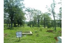 tanah premium view golf taman dayy