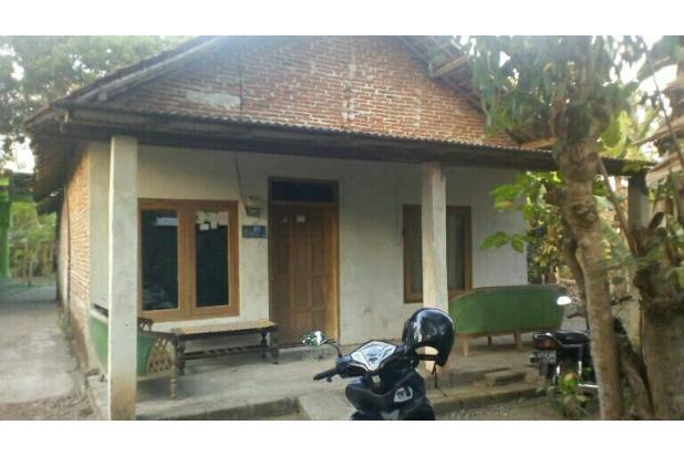 Dijual cepat rumah hunian di kota Blitar bisa  di tawar 13698298