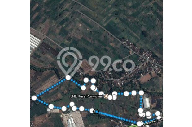Tanah Raya Wonorejo Pasuruan COCOK Untuk Industri Dll NOL Jalan Propinsi 14571605