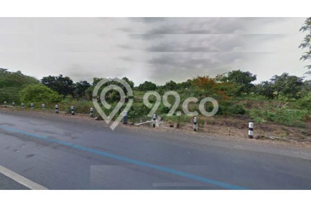 Tanah Raya Wonorejo Pasuruan COCOK Untuk Industri Dll NOL Jalan Propinsi 14571606
