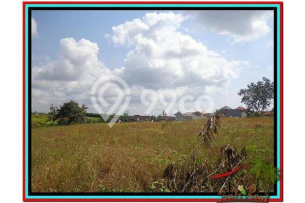 Magnificent, 250 m2 View sawah link villa di Canggu Brawa 3873284