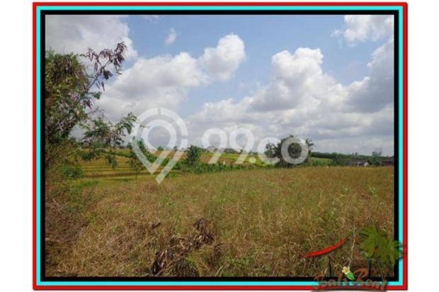 Magnificent, 250 m2 View sawah link villa di Canggu Brawa 3873285