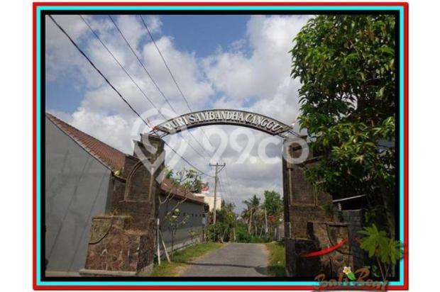 Magnificent, 250 m2 View sawah link villa di Canggu Brawa 3873286