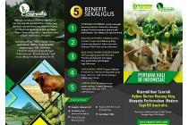 Tanah Kebun Durian Musang King dan Peternakan Sapi income ratusan juta